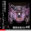プロジェクションマッピング祭壇の動画をリニューアル
